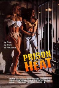 Watch & Download 18+ Prison Heat Movie (1993) | Hindi Dubbed | 480p[300MB]